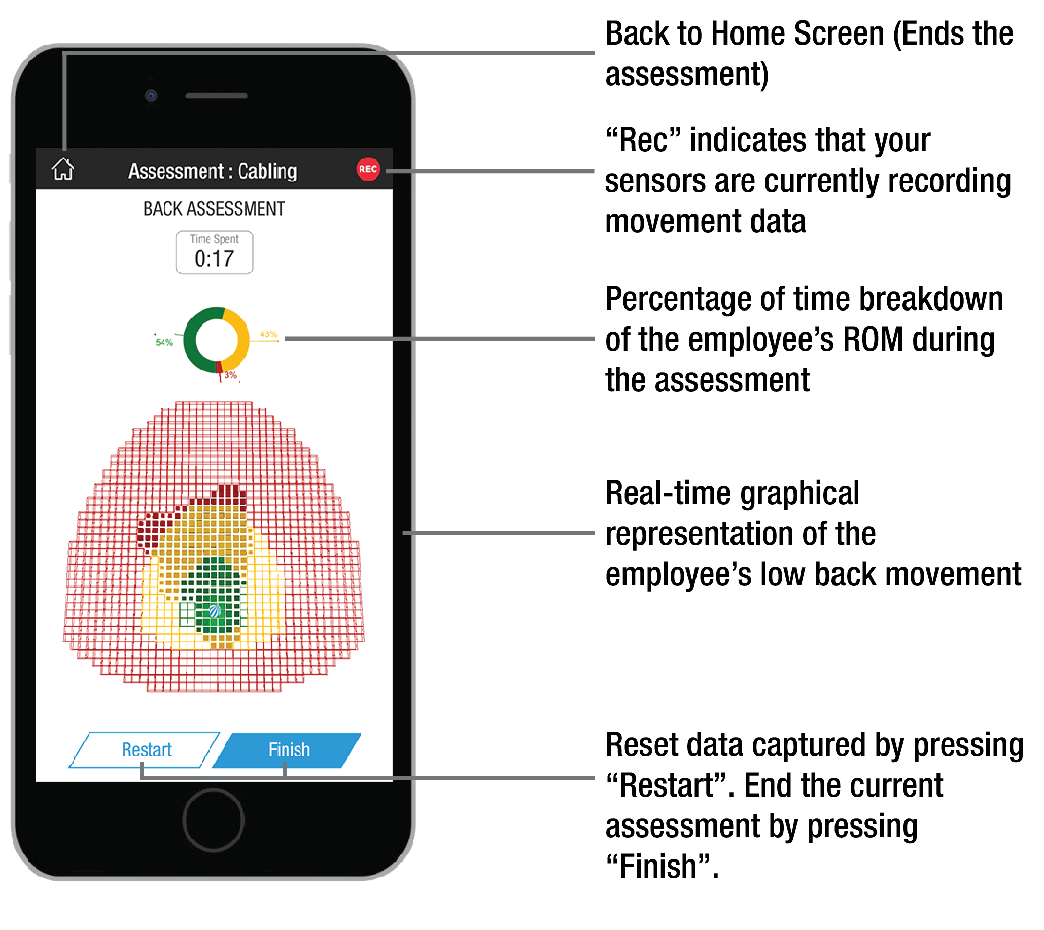 Low Back Live Assessment screen